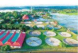국내 최대 장어양식장 투자자 모집