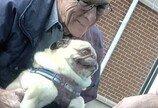 새로 태어난 아기 만나고 감동한 강아지의 표정..'할아버지보다 더 기뻐'