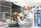 길냥이 마이크로칩 확인하니..3년 전 산사태로 죽은 고양이?