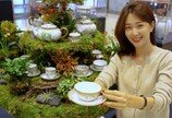 집콕에 '집꾸미기' 열풍…백화점 리빙 매출 33% 늘었다