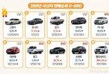 2019년 국산차 판매순위…부진 속 빛난 '국민세단'
