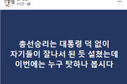 """손혜원 """"고작 1년 시장…대통령 없이 잘났다 설치더니"""""""