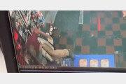 美볼티모어 한인 주류매장서 무차별 벽돌 폭행…한인 자매 중상
