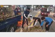 차도로 쏟아진 마늘…시민들은 주저없이 달려왔다 (영상)