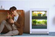 LG전자, 식물생활가전 'LG 틔운' 출시