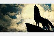 [정양환 기자의 억지로 쓰는 문화수다]음흉한 늑대가 '父子有親' 표상이라니…