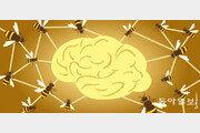[김재호의 과학에세이]꿀벌들의 집단지성, 인간의 뇌를 닮다