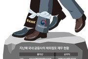 베트남 대형금융사 인수 제안받고도… 국내 은행법-심사에 막혀 '없던 일로'