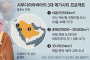 [단독]경제개혁 이끄는 '미스터 에브리싱' 한국 IT-신재생에너지에 관심 커