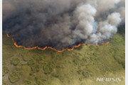 멕시코 유카탄반도 리조트·자연보호지구에 대형 들불