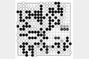 [바둑]보소프트컵 세계인공지능바둑대회… 패를 결행하지 못하는 백
