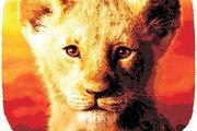 심바 아들, 왕위 계승할 수 있을까[서광원의 자연과 삶]〈8〉