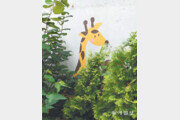 수풀 속 기린[고양이 눈]
