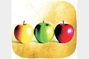 과일은 왜 둥글까[서광원의 자연과 삶]〈9〉