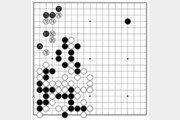 [바둑]보소프트컵 세계인공지능바둑대회… 둘 수 있는 수