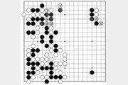 [바둑]보소프트컵 세계인공지능바둑대회… 의외의 곳