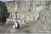 멕시코서 1만5000년전 인류가 만든 매머드 덫 발견