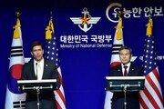 """한미 국방장관 """"연합공중훈련 무기한 연기…北 성의 보여야"""""""