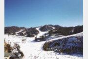 오크밸리 스키장, '해피 뉴이어-해맞이' 등 겨울 여행객 위한 다양한 이벤트 진행