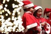 [퇴근길 한 컷]어느덧 크리스마스 시즌