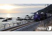 [속보]중·러, 北제재 해제 결의안 안보리 제출…남북철도사업 포함