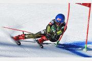 허겁지겁 뛰었지만… 위풍당당 '스키여제'