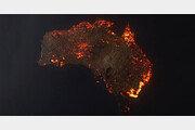 [데이터 비키니]지난 9월 시작된 '호주 산불' 피해 규모는?