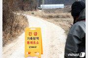 화천·철원 멧돼지 폐사체 4마리 ASF 양성…강원 26번째