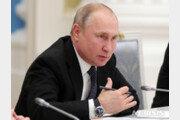 """푸틴 """"대통령 임기 제한 없애는 개헌에는 반대""""…진짜 속내는?"""