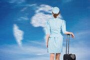 """""""승무원은 임신하면 비행을 못 한다는데 맞나요?""""[떴다떴다 변비행]"""