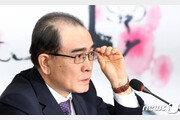 """'태구민'으로 총선 도전 태영호 """"北개별관광? 정의롭지 못한 발상"""""""