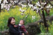[날씨] 20일 봄기운 성큼…경기·충청 미세먼지 '나쁨'