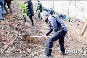 산림청, 올해 서울 남산 면적의 77배만큼 나무 심는다