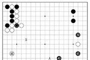 [바둑]중신증권배 세계 AI바둑 오픈 대회… 유연한 공략