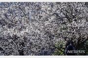 [날씨]3일 포근 봄날씨…경기남부·충북 등 대기질 나쁨