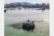 [드론으로 본 제주 비경]마을의 액운을 막아주는 '방사탑'