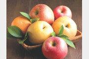 국산 과일, 새콤달콤 사과… 시원한 배… 껍질째 먹으면 항산화력 UP