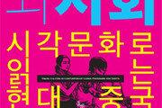 [책의 향기]'비주류' 중국 영화가 달라지기 시작했다