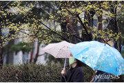 [날씨]다음주 대체로 포근…주초 부산 등 일부 비소식