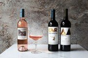 보틀샤크, 봄에 어울리는 와인3종 이마트 트레이더스 통해 출시