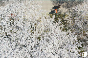 [날씨]일부 영하권 추위 8일 오후 풀려…건조특보 지속 불조심