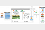 aT, 온라인경매 강화해 농산물 유통 혁신 박차
