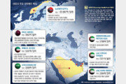 [글로벌 포커스]중동 국부펀드, 저유가에도 공격투자… IT-헬스 등 미래산업 공략
