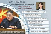 '핵을 쥔 지도자' 안위 불투명… 무력통제권 변화땐 안보 초긴장