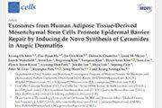 엑소코바이오,  엑소좀(ASCE) 기반 피부재생·리페어 연구결과  Cells 저널에 발표