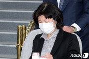 '부동산 의혹' 양정숙 당선인, 시민당 상대로 제명결의 무효소송 제기
