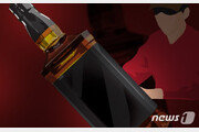 임시마약류 '러시' 7병 몰래 들여온 중국인 집행유예