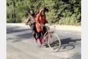 다친 아빠 자전거 태운 15세 인도 소녀, 일주일간 1200km 달려 '목숨 건 귀향'