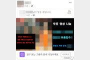 성착취물 제작·유포 '중앙정보부' 10대, 추가 범행 2건 더