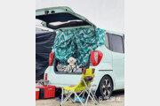 오랜만의 캠핑[고양이 눈]